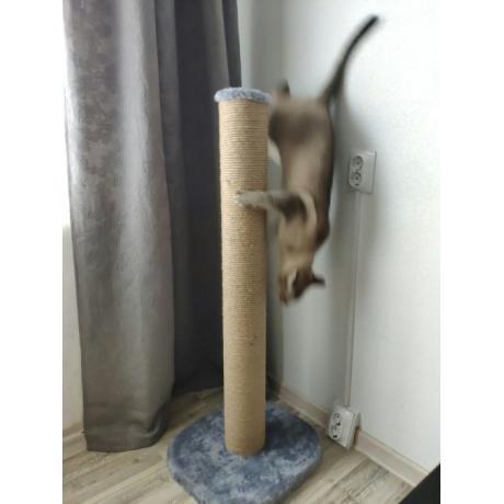 Высокая когтеточка для кошек арт.8