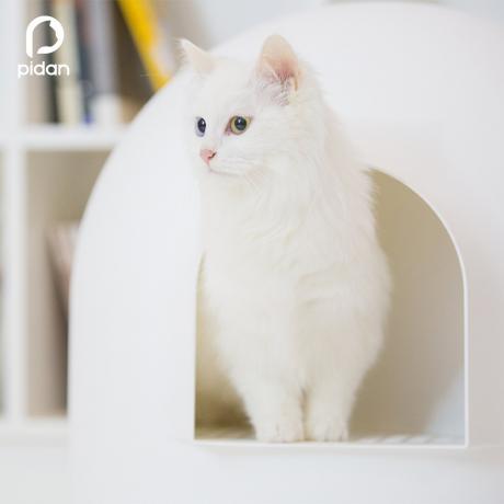 """Закрытый лоток для кошки Pidan """"ИГЛУ"""", белый"""