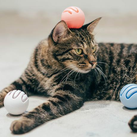 Игровые шарики для кошек от Pidan (Шарик с кошачьей мятой - голубой)