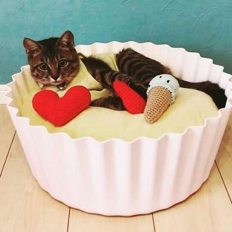 """Лежак для кошек """"Кексик"""" от Pidan"""