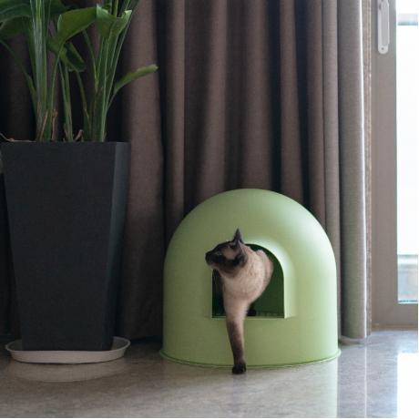 """Закрытый лоток для кошки Pidan """"ИГЛУ"""", зеленый"""