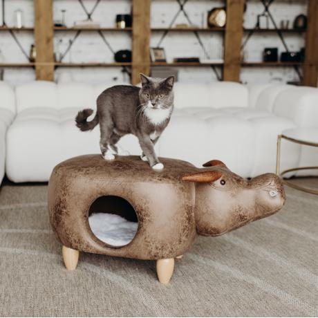 Домик-пуфик для кошек Буйвол