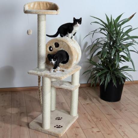 Домик для кошки Salamanca, 138 см, бежевый