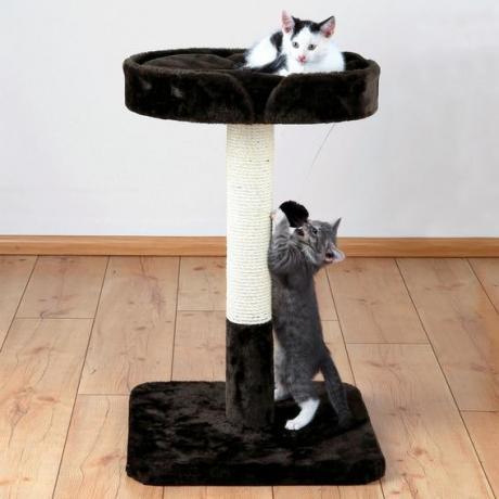 """Домик для кошки """"Рауль"""", 72 см, коричневый"""